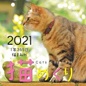 [中央経済社] カレンダーリフィル猫めくり 2021年 カレンダー 日めくり CK-C21-02 [キャンセル・変更・返品不可]