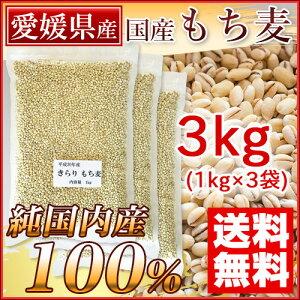 国産 もち麦 3kg 愛媛県産(純国内産10割) [送料無料]