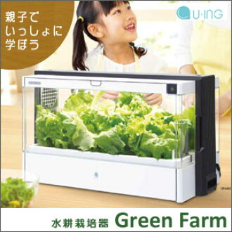 Without soil, grow vegetables. Now the hydroponic cultivation of the attention at home easily. fs04gm,
