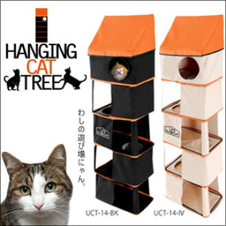 Dead space have cat playground! Neko-Chan delighted expression hanging cat tree is. fs04gm,