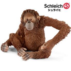 シュライヒ 動物フィギュア オランウータン(メス) 14775【Schleich 動物 フィギュア デザイン おしゃれ おもちゃ プレゼント インテリア ギフト】