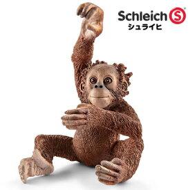 シュライヒ 動物フィギュア オランウータン(仔) 14776【Schleich 動物 フィギュア デザイン おしゃれ おもちゃ プレゼント インテリア ギフト】