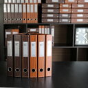 【ポイント5倍】ファイル A4 2穴 / デルフォニックス ビュロー ウッド レバーアーチファイル(A4サイズ・2穴・背幅50m…