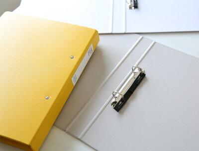【今ならポイント10倍!!】デルフォニックスDELFONICS/buroビュロー2穴ファイル(A4サイズ・2穴・背幅39mm)(500317)【A4ファイル/デザイン/おしゃれ/インテリア】