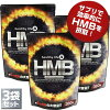 healthylife HMB(대용량 약 6개월 분 ) (hmb 사프리 서플리먼트 여성 국산 hmb 타블렛 필수 아미노산 로이신알갱이 건강한 생활 낙천 통판)