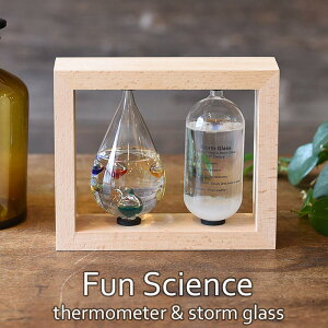 《CTS》【FunScience】温度計&ストームグラスガリレオ温度計ストームグラスインテリア小物ディスプレイ小物サイエンス科学温度計ガラスインテリア333-272