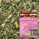 【送料無料】5袋セット「頭ズキズキ赤ずきん」20包(5包入×5)ティーバック(テトラ型)ブレンドハーブティー【単独発送(同梱不可)】