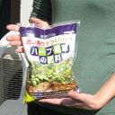 濃い香りをつくりたい ハーブ・香草の肥料