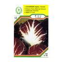 ●ハーブ・西洋野菜の種 「チコリ トレビス」