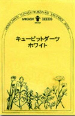 【ネコポス対応商品】ハーブ・ワイルドフラワーの種 「キューピッドダーツ ホワイト」