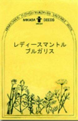 【ネコポス対応商品】ハーブの種 「レディースマントル ブルガリス」