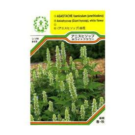 【ネコポス対応可能】ハーブの種 「アニスヒソップ ホワイト」