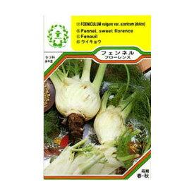 【ネコポス対応可能】ハーブ・西洋野菜の種 「フェンネル・フローレンス」