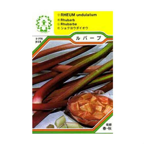ハーブ・西洋野菜の種 「ルバーブ」