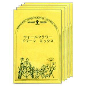 ウォールフラワー・ドワーフ・ミックス 5袋セット/ハーブの種・ワイルドフラワー【ネコポス対応可能】