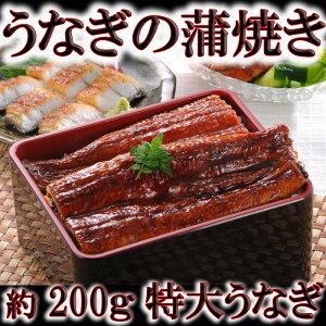 うなぎ(鰻)の蒲焼き!約200gの特大サイズ!厳しい検査を通過した厳選の中国産 【訳あり】