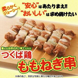 焼き鳥 国産つくば鶏 ももねぎ串!40g×20本 新鮮な鶏もも肉をふんだんに使った定番の焼き鳥!バーベキュー BBQに最適【焼き鳥 焼鳥 やきとり】