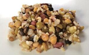 【送料無料】【メール便】五種豆と五穀のミックス 500g (nh825803)