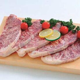 牛サーロインステーキ (脂肪注入成型肉) 120g×5枚(pr)(20831)