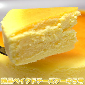 【送料無料】【同梱不可】絶品ベイクドチーズケーキ5号 (SM00010090)