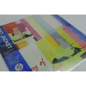 ハンカチーフ ギフトジャケットチーフ 天衣無縫  オーガニックコットン C柄 飯田淳 52×53cm 日本製