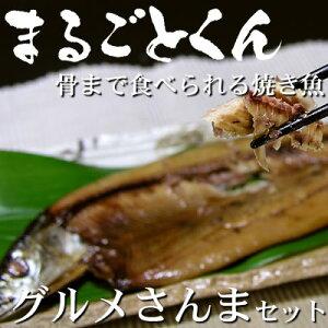 静岡県産 沼津の干物【ひもの】 【まるごとくん】サンマ【送料無料】о干物 さんま 秋刀魚