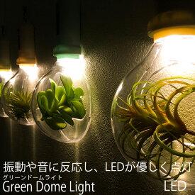壁掛けインテリアの新定番LED Green Dome Light グリーンドームライト震動と音に反応し点灯おしゃれ カフェ インテリア トイレ 照明 間接照明 フェイクグリーン 送料 お得 小物 インテリア雑貨 ライト