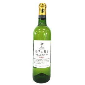 [2018] 堅下本葡萄 合名山南西畑 キングセルビー 720ml / カタシモワイナリー [大阪] KING SELBY / Katashimo Winery [Na4-6]