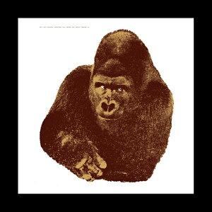 【ポイント5倍!】DANESE(ダネーゼ)「Quindici il gorilla」