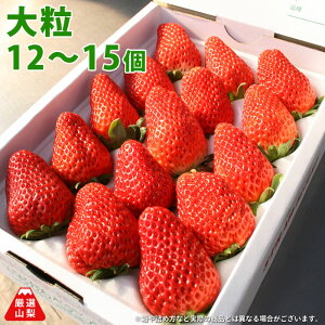 大粒いちご 大粒サイズ 贈答用 12〜15個入り 1パック 山梨県産 イチゴ 章姫 紅ほっぺなど