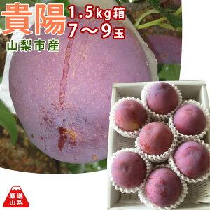 【送料無料】 貴陽 1.5kg箱 (大玉 7〜9玉) 山梨県 山梨市産 完熟 すもも 朝採れ 通販 農家直送