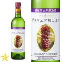 新酒 山梨ワイン 白 中甘口 デラウェア 蒼龍葡萄酒 無添加デラウェア初しぼり 720ml