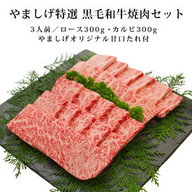 【あす楽対応】やましげ特選 黒毛和牛焼肉食べ比べセット 3人前(ロース300g カルビ300g やましげオリジナル甘口たれ付き)