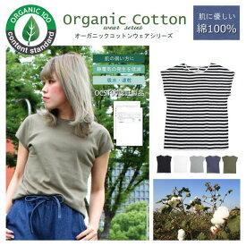 【オーガニック コットン Tシャツ】Tシャツ レディース オーガニック素材 コットン 送料無料 アウトレット価格