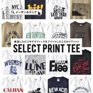 FruitoftheLoom(フルーツオブザルーム)セレクトプリントTシャツ