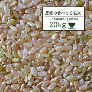 米 20kg 送料無料 玄米食 調整済 【令和元年産 農家の食べているおいしい玄米20kg】(10kg×2)オリジナル 20キロ 小分け