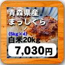 28年産青森県産 まっしぐら白米20kg(5kg×4袋)