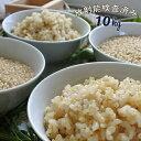 米 10kg 青森県産 2年産 特別栽培米 まっしぐら 玄米10kg(5kg×2)玄米食/人気/安い【米10kg】
