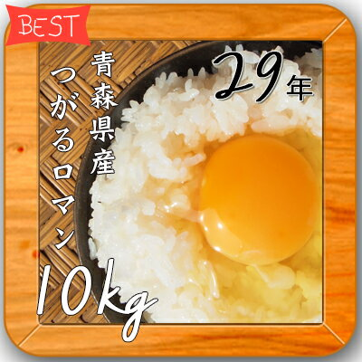 米 10kg 送料無料 人気 お米 精米【29年産 青森県産 つがるロマン 白米10kg(5kg×2)】 安い 10キロ 小分け