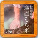 28年産 秋田県産 産直もち米(白米) 5kg