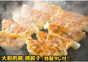 大和肉鶏餃子