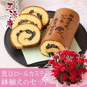 【母の日フラワーギフト】【送料無料】鉢植えセット「京・伏見 三源庵 黒豆ロールカステラ」