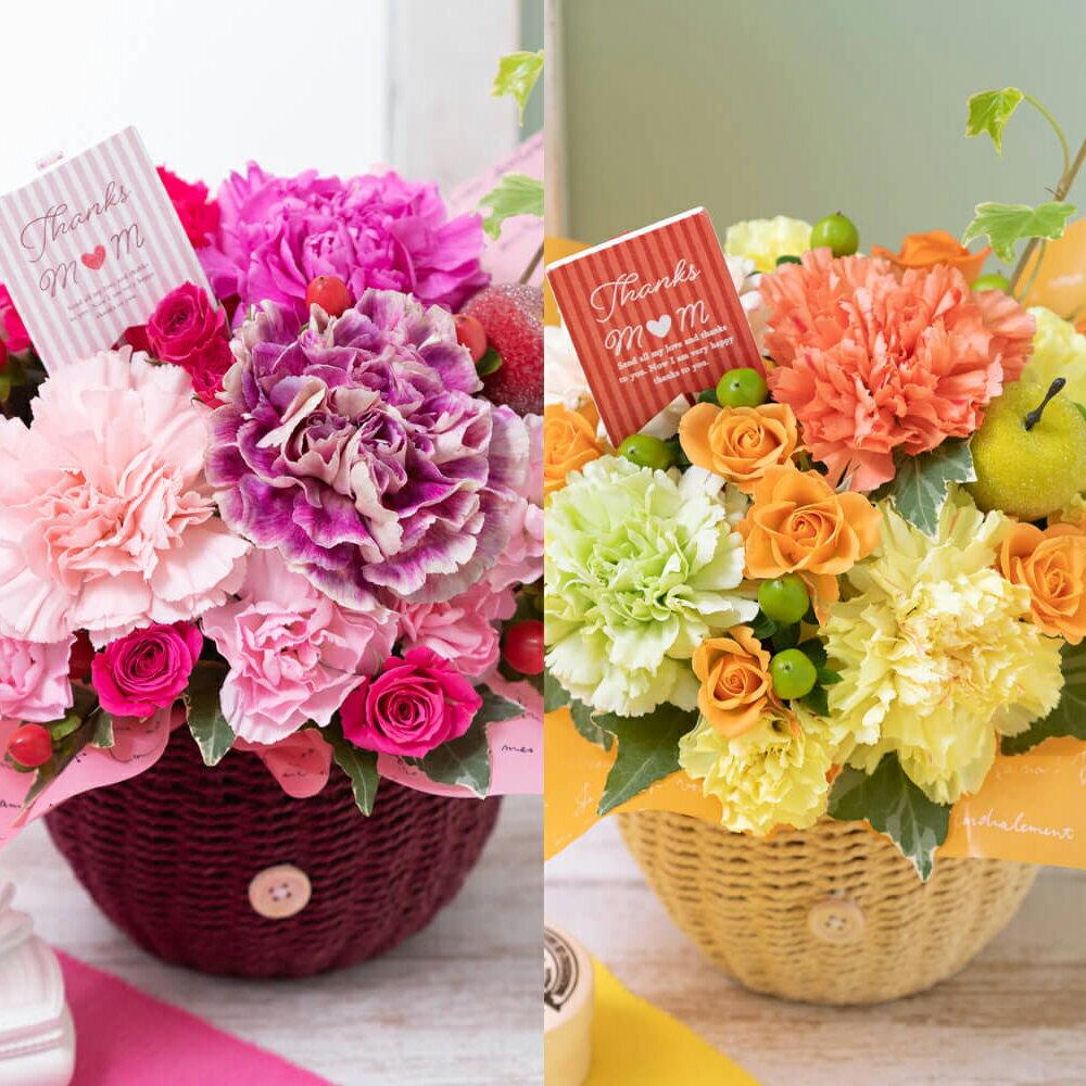 選べる2色 アレンジメント 「マザーズ・ピンク/オランジェ」 カーネーション プレゼント 2019 【母の日フラワーギフト】