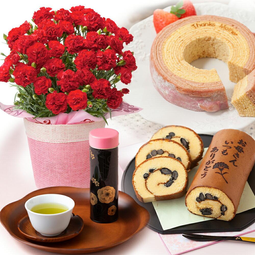 【送料無料】 選べる鉢植えセット カステラ バウムクーヘン 新茶 カーネーション スイーツ プレゼント 2019 【母の日フラワーギフト】