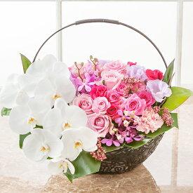 【アレンジメントフラワー】「ファレノプシス バスケット〜pink〜」 生花 フラワーアレンジメント 誕生日プレゼント 記念日 結婚記念日 誕生日 ギフト 送別会 結婚 お祝い 新築祝い