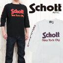 Sch3173034 top
