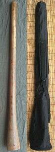 【ケース付き/ティモール ユーカリ ディジュリドゥー☆ナチュラルNo.03(D)☆】 〈民族楽器 太古の金管楽器 木管楽器 アボリジニ オーストラリア ディジェリドゥー〉