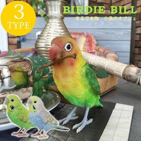 リアルな小鳥のオブジェ インコ アニマル 鳥 ディスプレイ インテリア 雑貨 小鳥 かわいい ★BIRDIE BILL(バーディ ビル)02P03Dec16】
