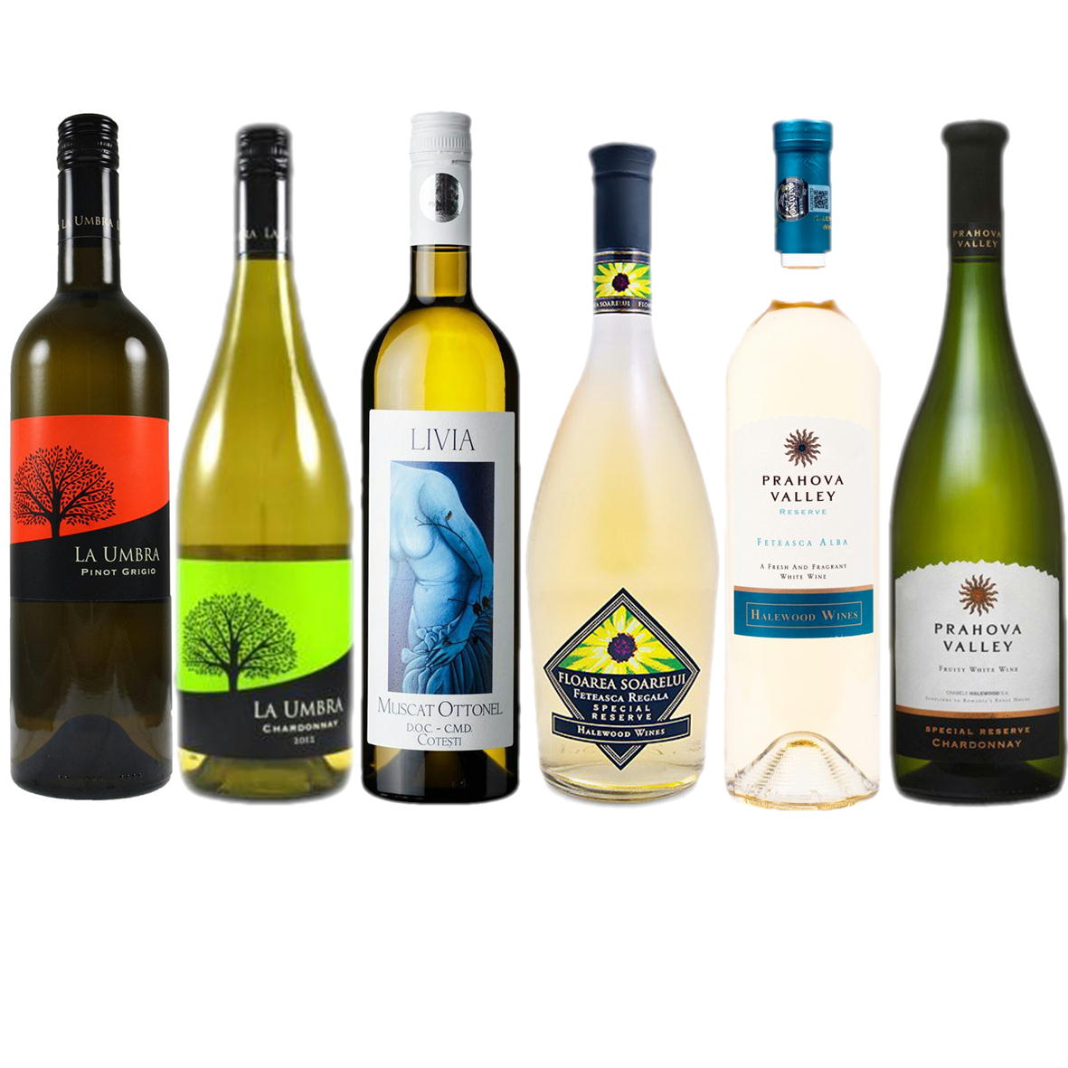 エレガント白ワイン6本セット