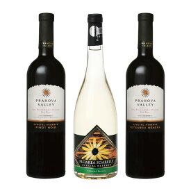 今話題のニューエンシェントワールドワインちょっとお得な東欧ルーマニアワインお試し3本セット